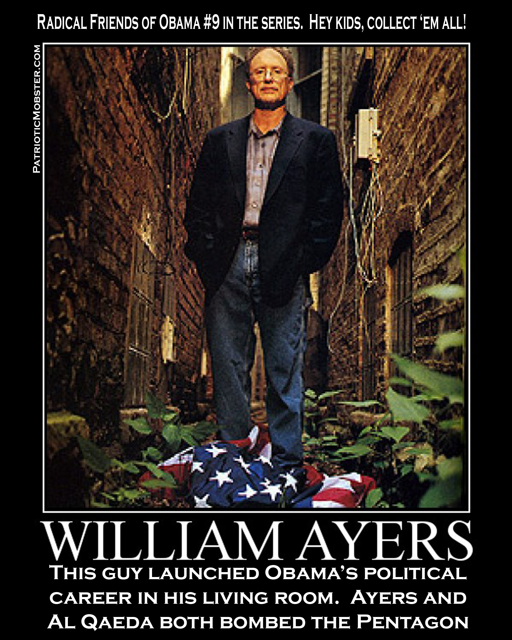 William Ayers on the US Flag
