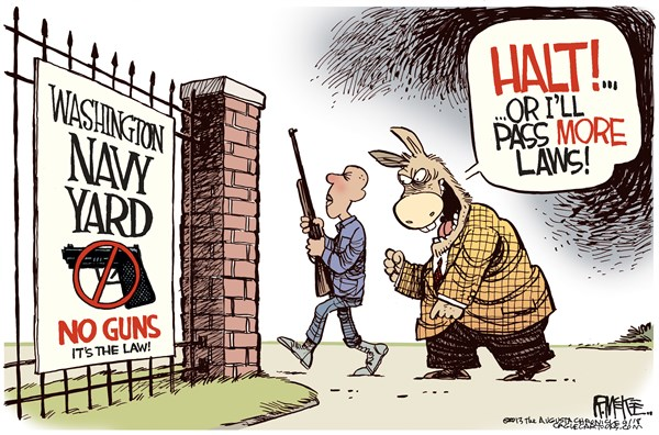 More Gun Laws