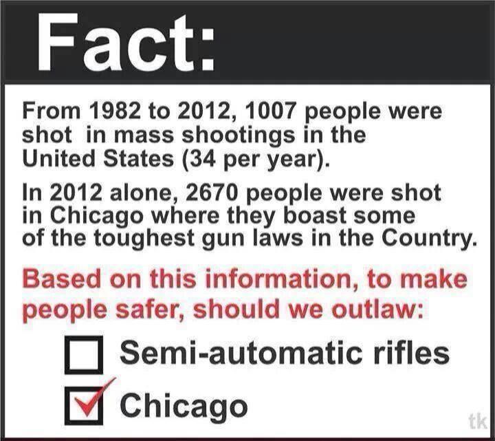Gun Fact