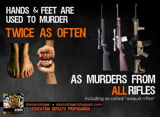 Gun Stats