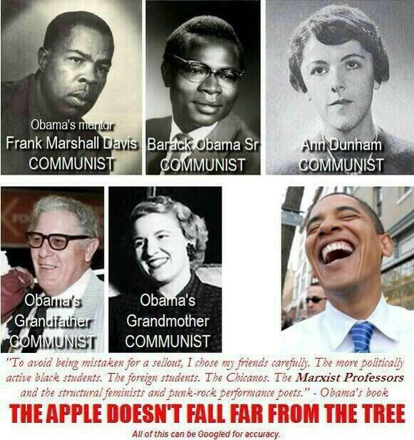 Obama Apple Tree
