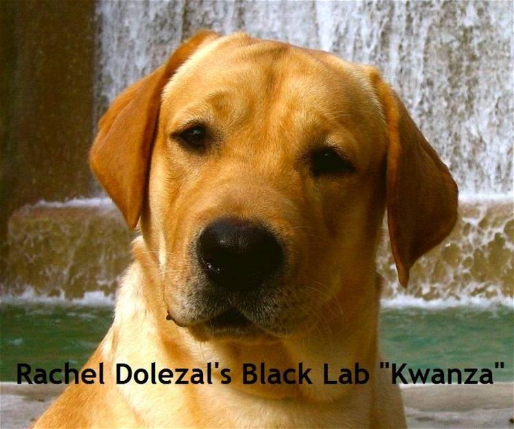 Rachel Dolezal's Black Lab Kwanzaa