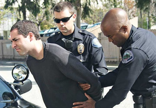 Cops Making Arrest