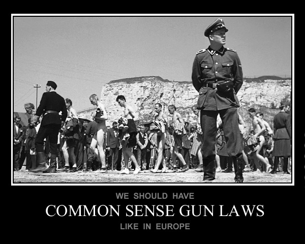 Gun Control European Style