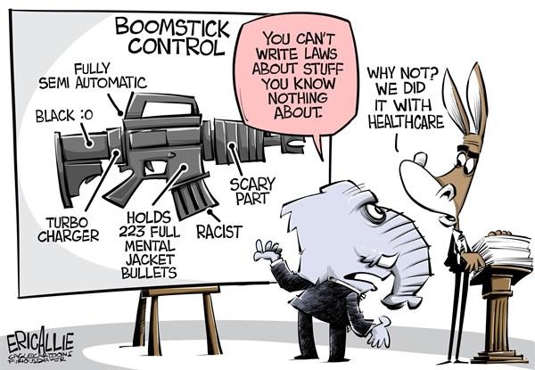 Leftist Gun Control