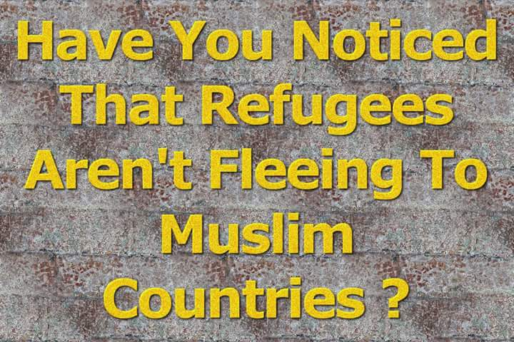 Syrian Muslim Refugees