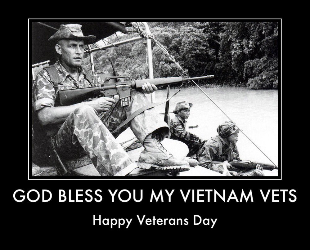 Veterans Day Vietnam
