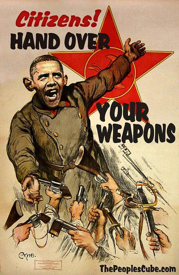 Obama Gun Confiscation