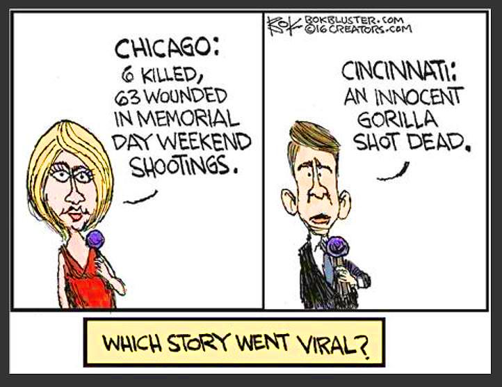 Chicago Black Violence Cartoon