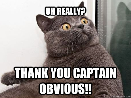 captain-obvious-2